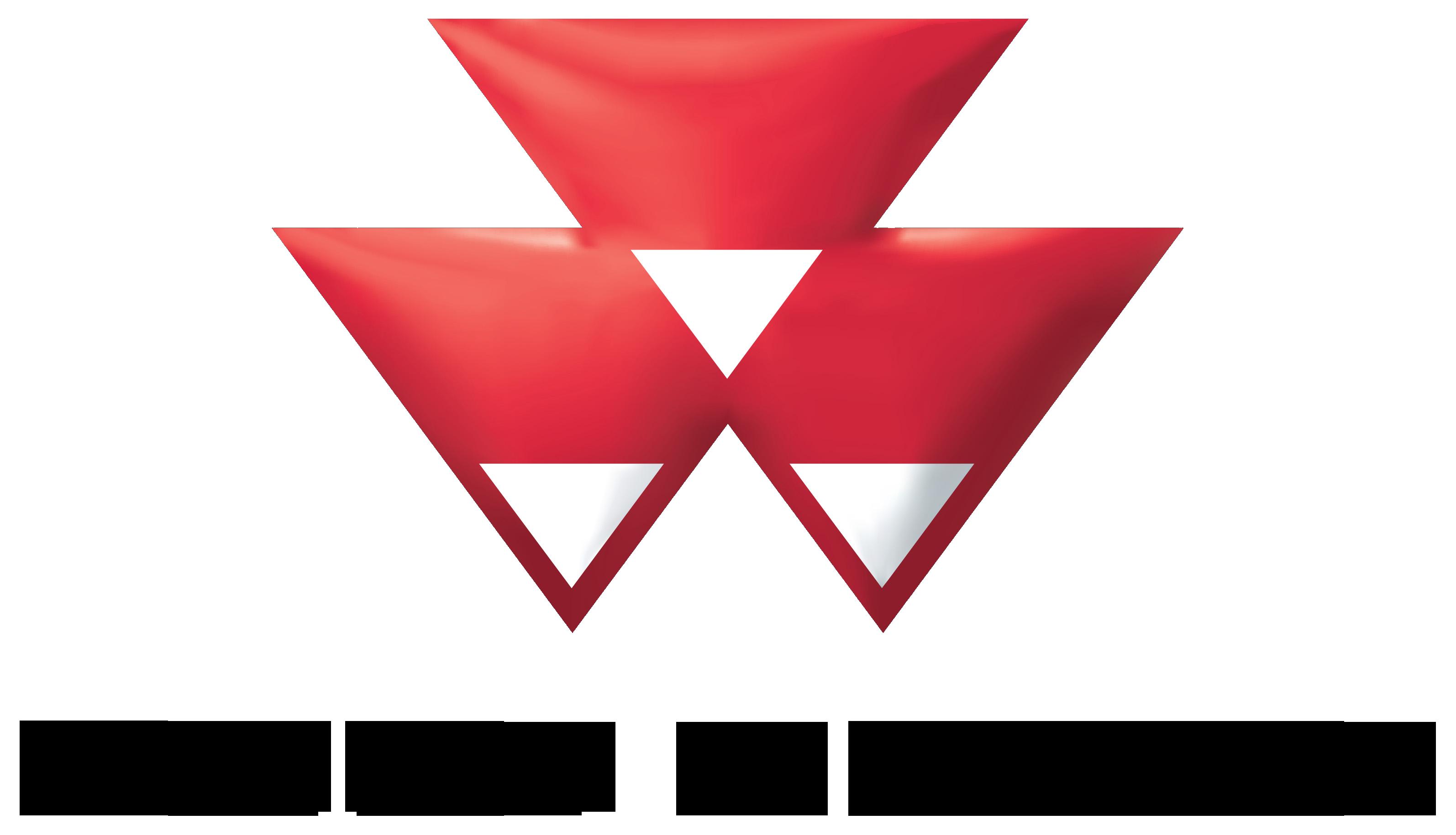 Logo Veiling website Mechangroep