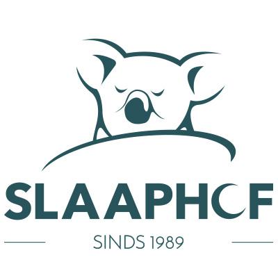 Logo Veiling website Slaaphof
